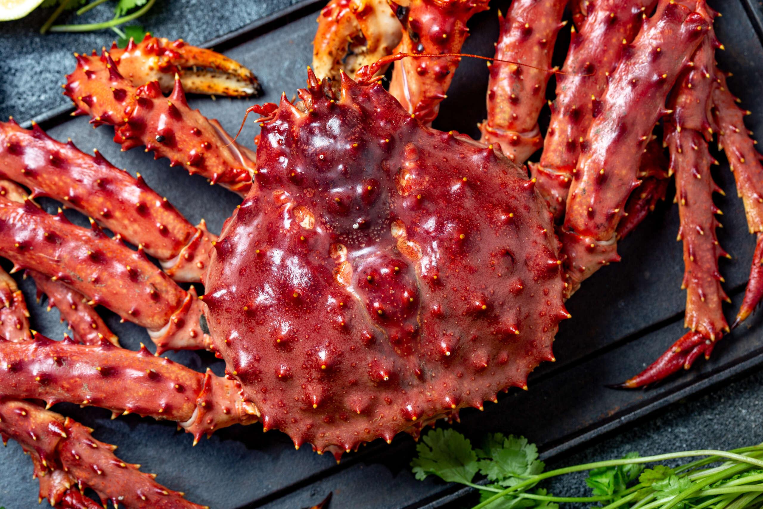 Cooked Organic Alaskan King Crab Legs with lemon and cilantro.